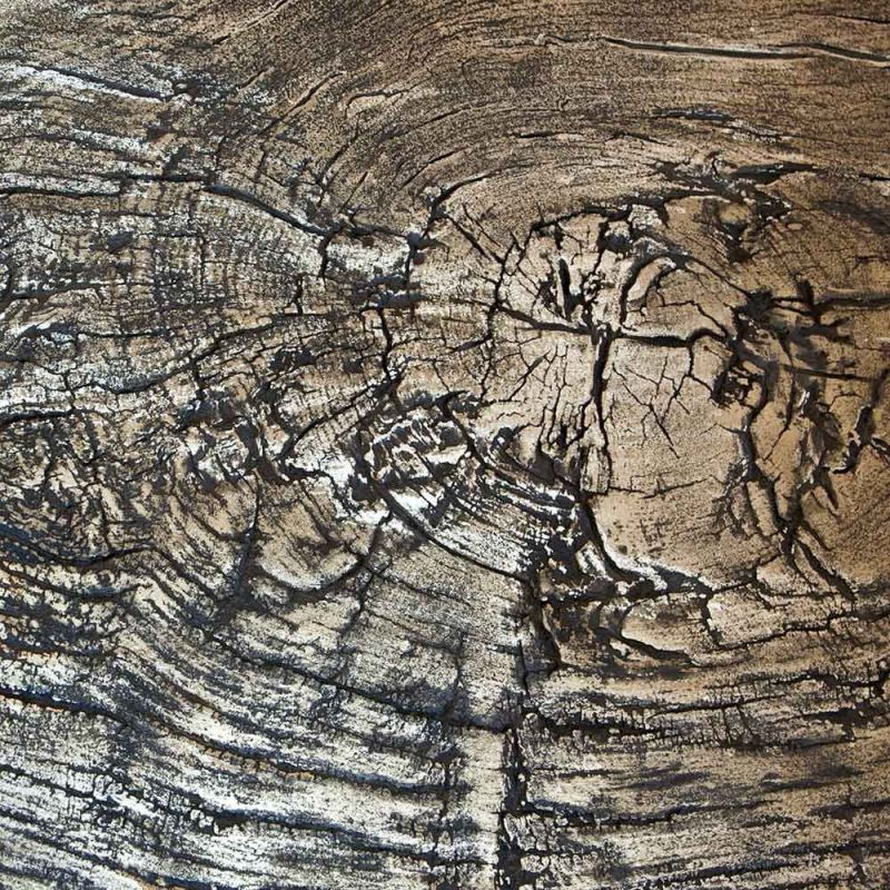 albeo brass  coffee table in wood by Irene Maria ganser