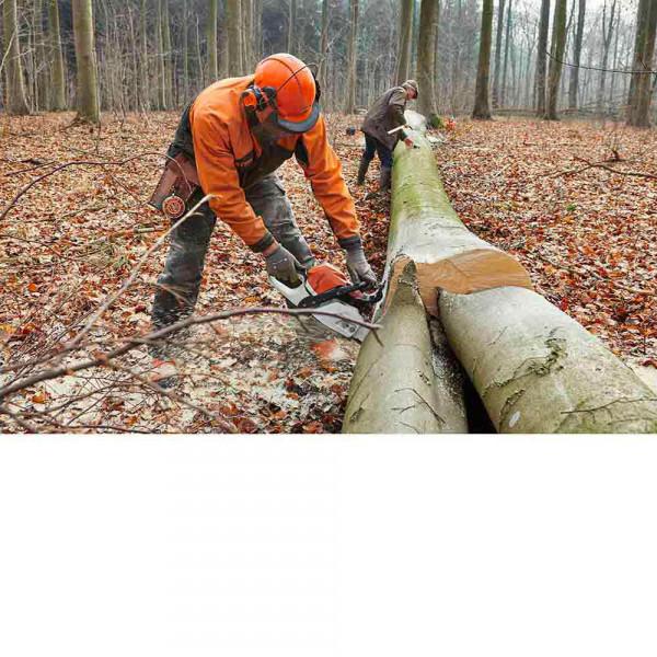 Ouvrier forêt